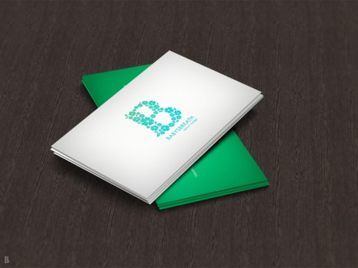 logo design malaysia, graphic designer malaysia, bel koo, freelance graphic designer